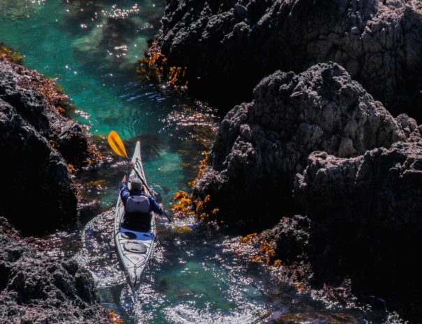 NZ Kayak Tours beautiful New Zealand Tours