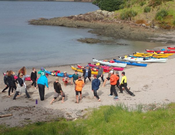 Bay of Islands Group Kayak Day Tours